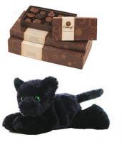 Panther Plush w/ Chocolate Box