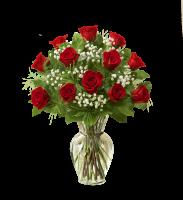 Modern Dozen Rose Vase